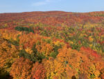 North Shore MN Fall Colors